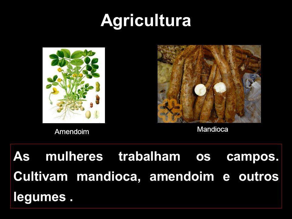 Agricultura Mandioca. Amendoim. As mulheres trabalham os campos.