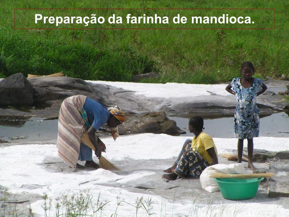 Preparação da farinha de mandioca.