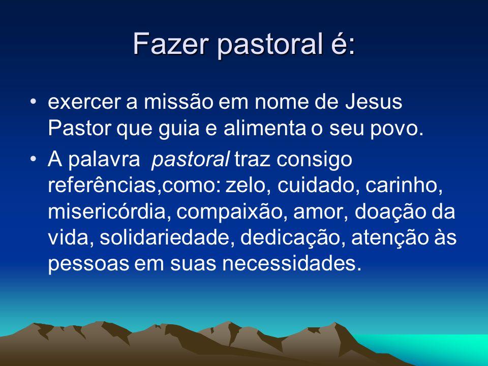 Fazer pastoral é: exercer a missão em nome de Jesus Pastor que guia e alimenta o seu povo.