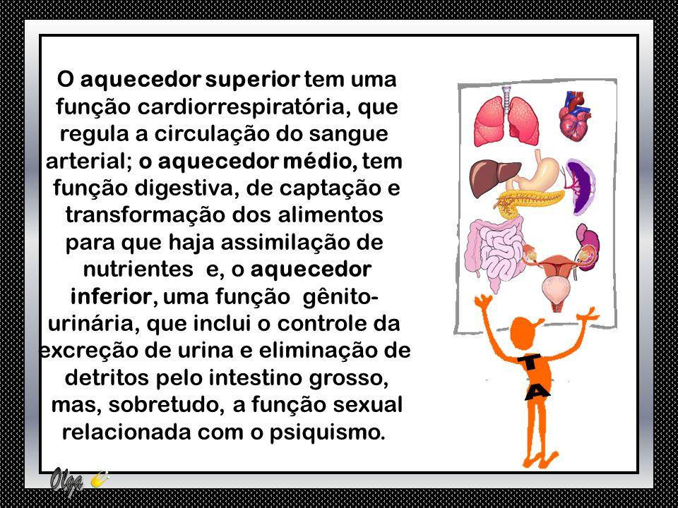 O aquecedor superior tem uma função cardiorrespiratória, que