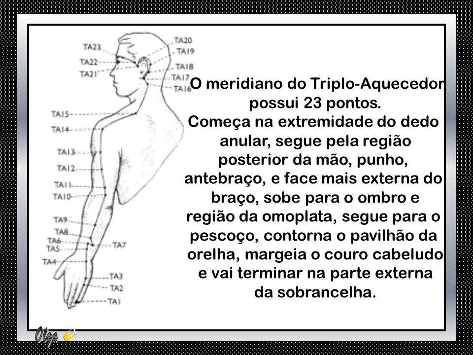 O meridiano do Triplo-Aquecedor possui 23 pontos.
