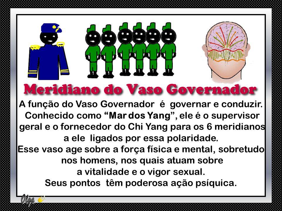 A função do Vaso Governador é governar e conduzir.