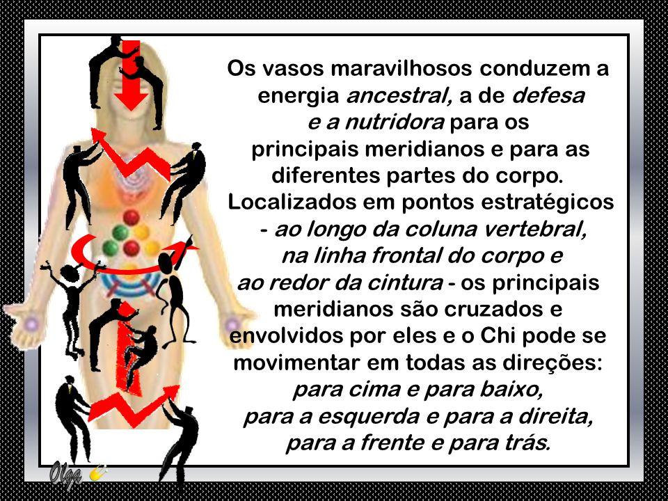 Os vasos maravilhosos conduzem a energia ancestral, a de defesa