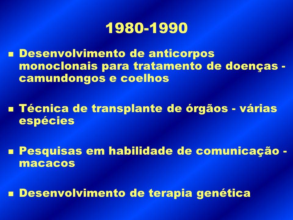 1980-1990 Desenvolvimento de anticorpos monoclonais para tratamento de doenças - camundongos e coelhos.