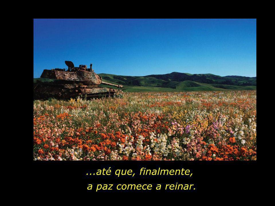 ...até que, finalmente, a paz comece a reinar.
