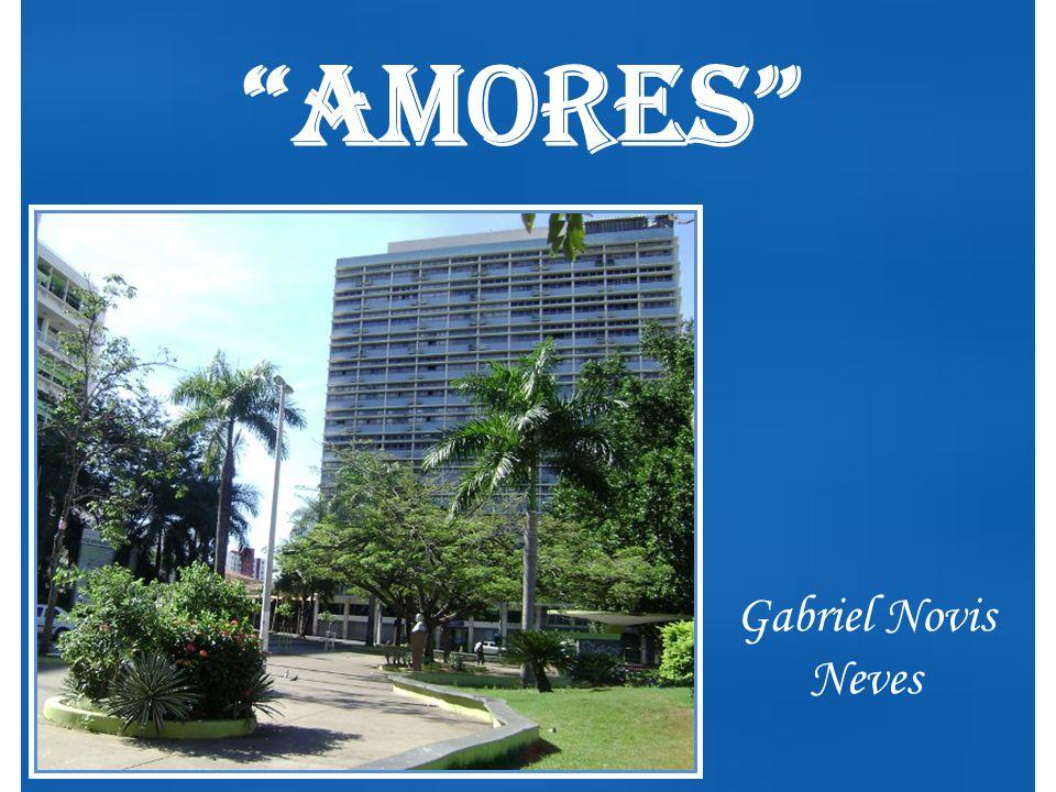 Amores Gabriel Novis Neves
