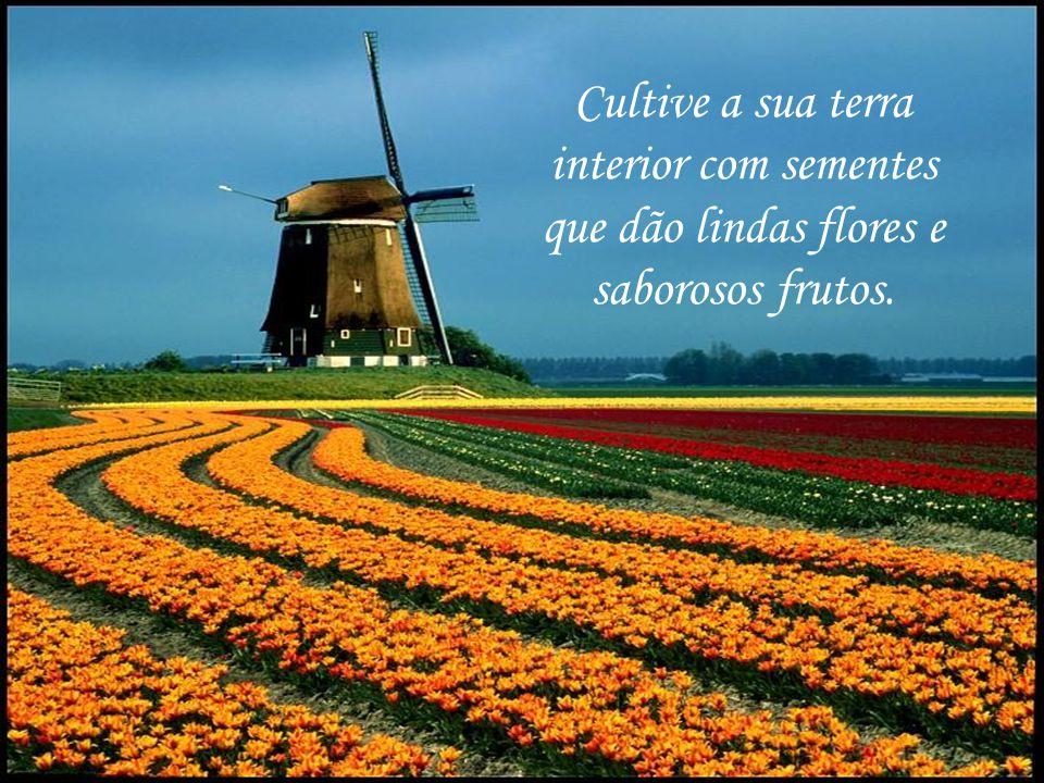 Cultive a sua terra interior com sementes que dão lindas flores e saborosos frutos.