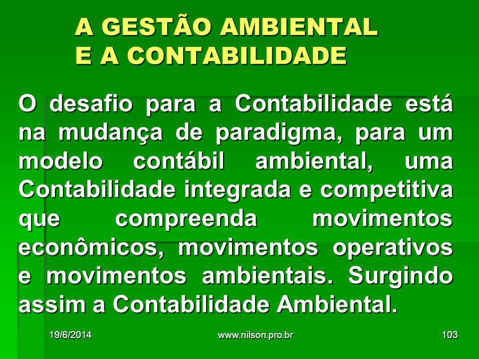 A GESTÃO AMBIENTAL E A CONTABILIDADE
