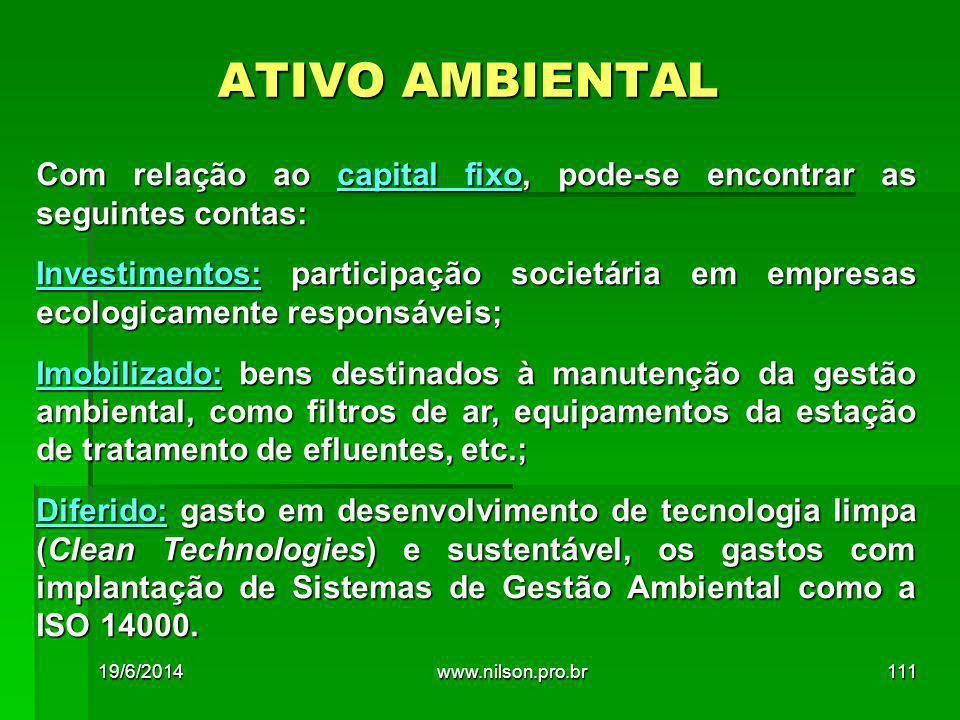 ATIVO AMBIENTAL Com relação ao capital fixo, pode-se encontrar as seguintes contas:
