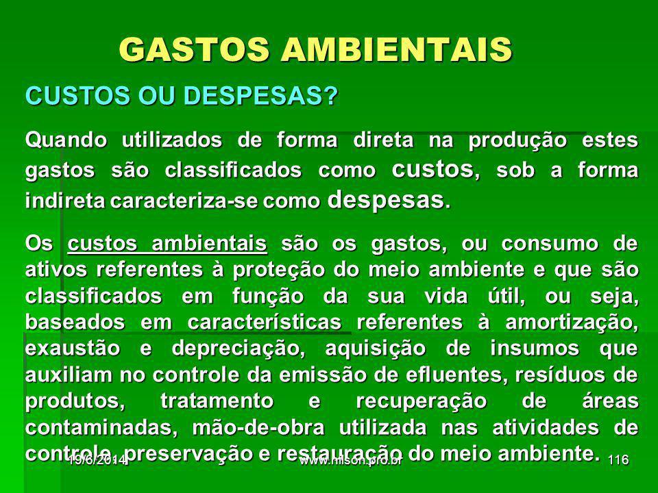 GASTOS AMBIENTAIS CUSTOS OU DESPESAS