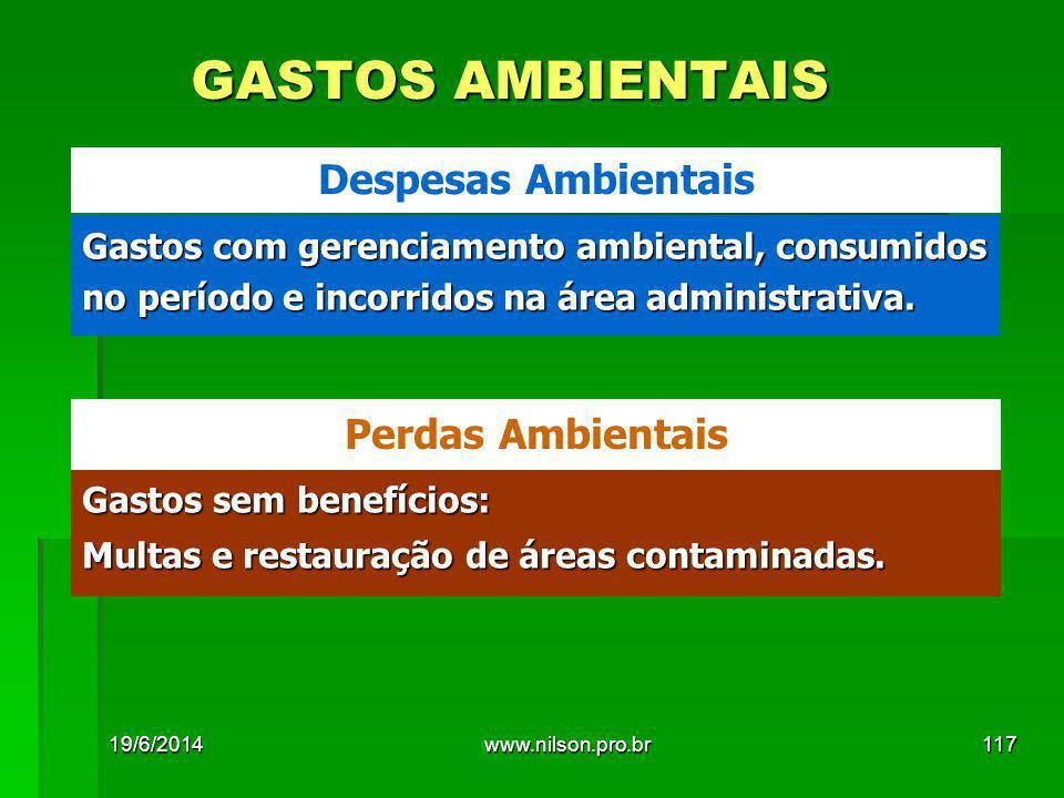 GASTOS AMBIENTAIS Despesas Ambientais Perdas Ambientais