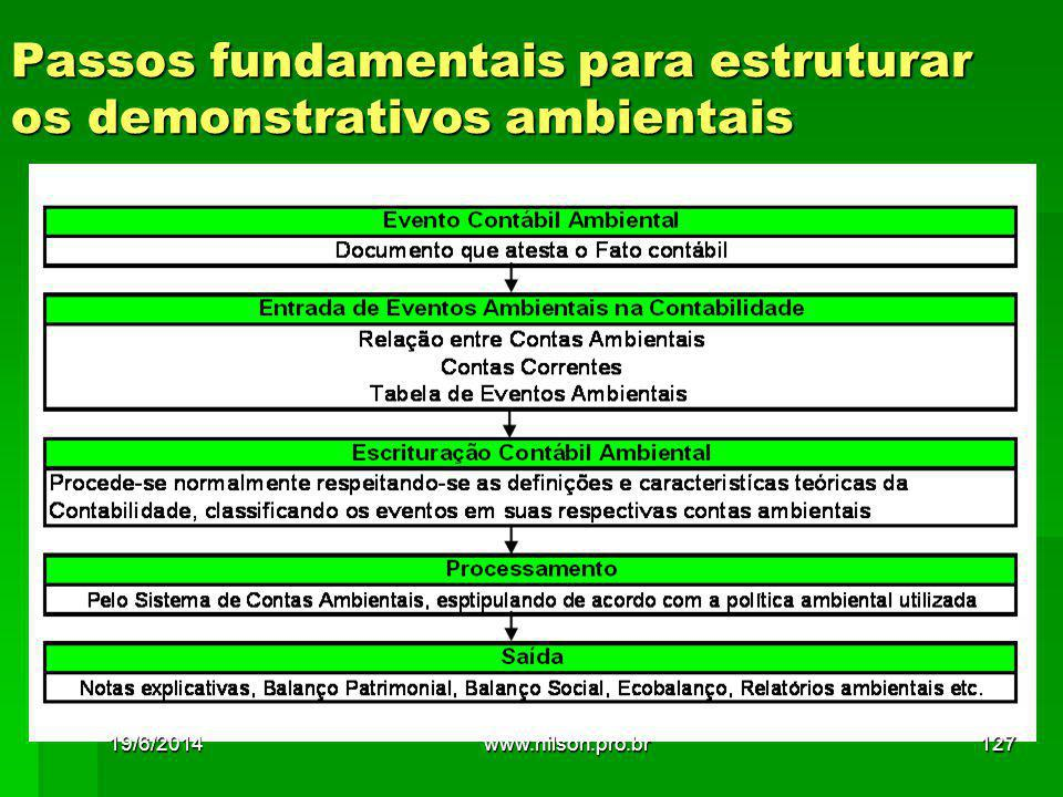 Passos fundamentais para estruturar os demonstrativos ambientais