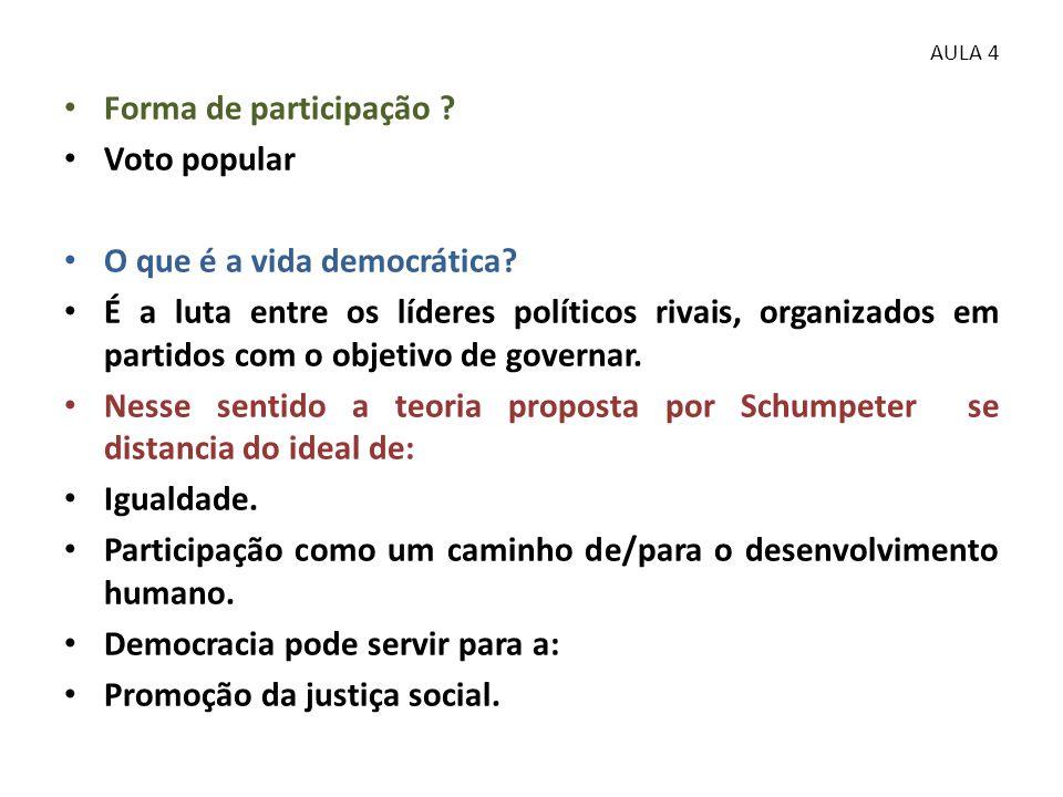 O que é a vida democrática