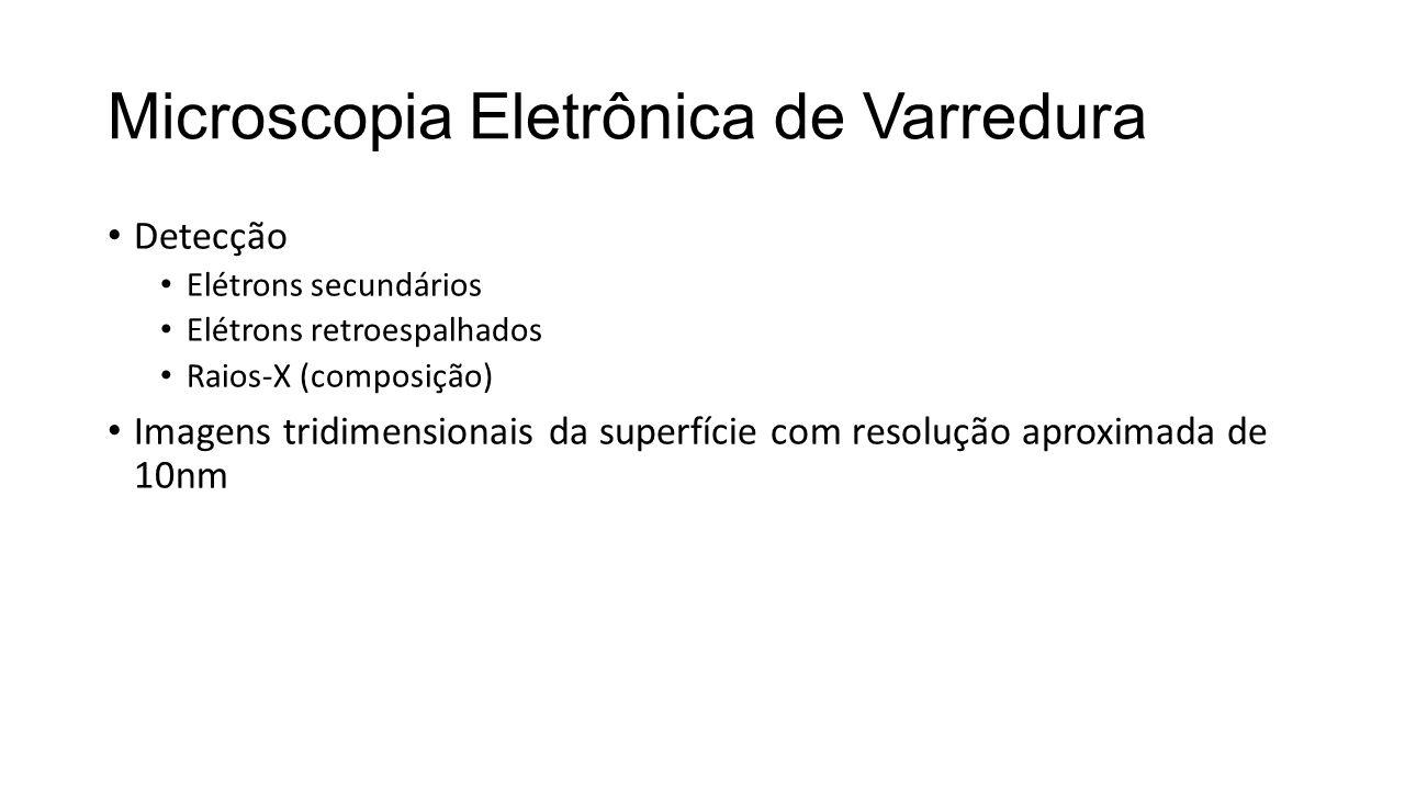 Microscopia Eletrônica de Varredura