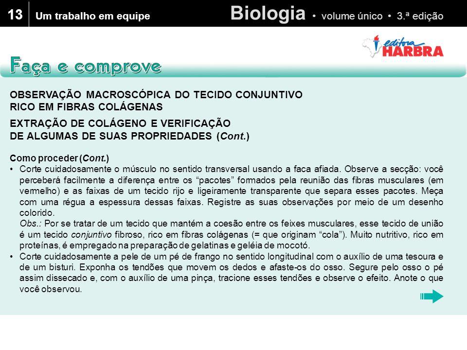 13 Um trabalho em equipe. OBSERVAÇÃO MACROSCÓPICA DO TECIDO CONJUNTIVO RICO EM FIBRAS COLÁGENAS.