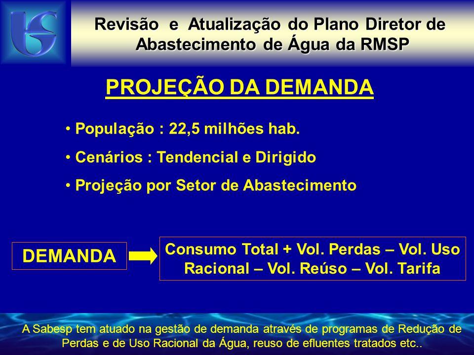 PROJEÇÃO DA DEMANDA DEMANDA Revisão e Atualização do Plano Diretor de