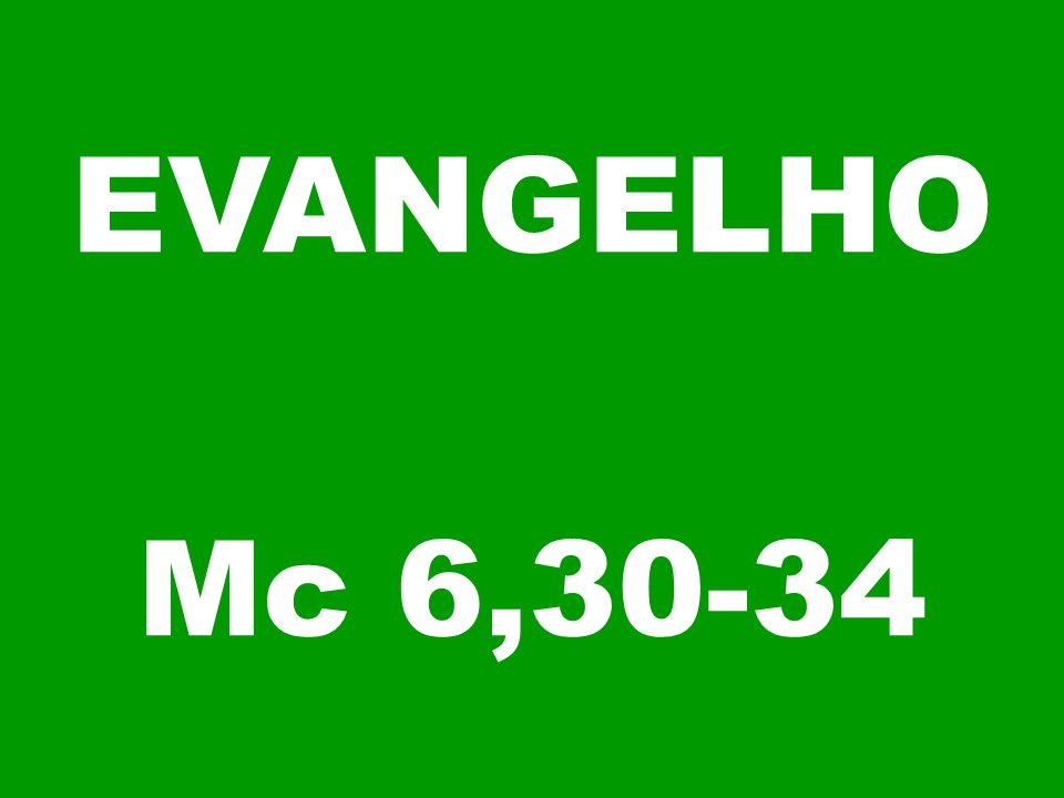 EVANGELHO Mc 6,30-34