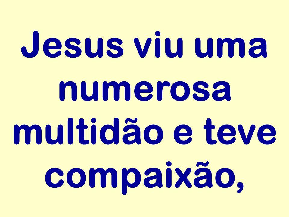 Jesus viu uma numerosa multidão e teve compaixão,
