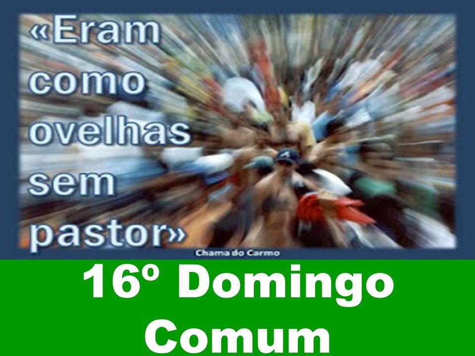 16º Domingo Comum
