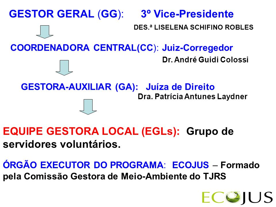 GESTOR GERAL (GG): 3º Vice-Presidente