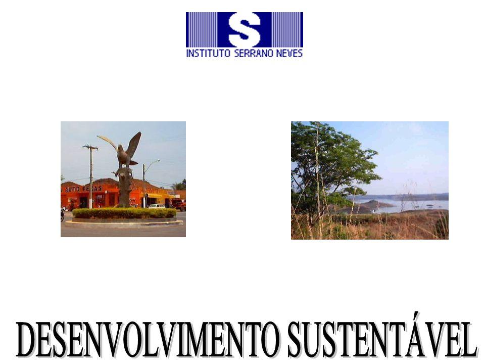 Projeto Amigo do Lago da Serra da Mesa