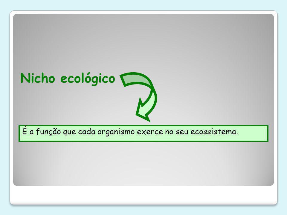 Nicho ecológico É a função que cada organismo exerce no seu ecossistema.