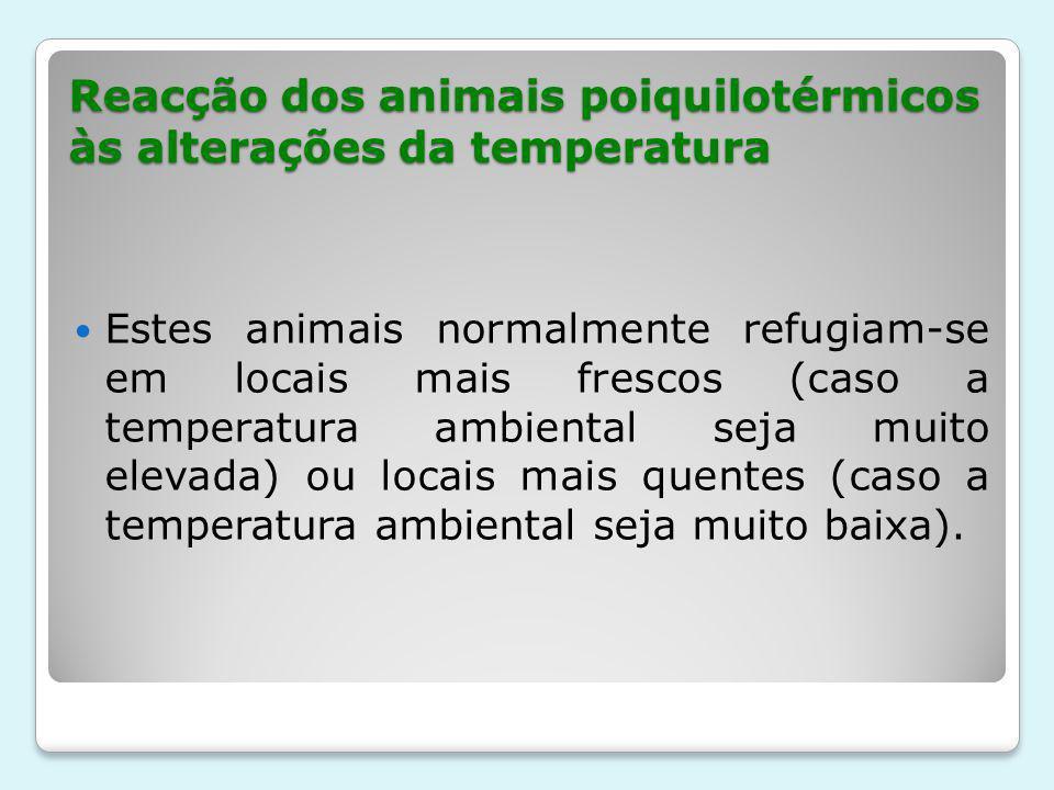 Reacção dos animais poiquilotérmicos às alterações da temperatura