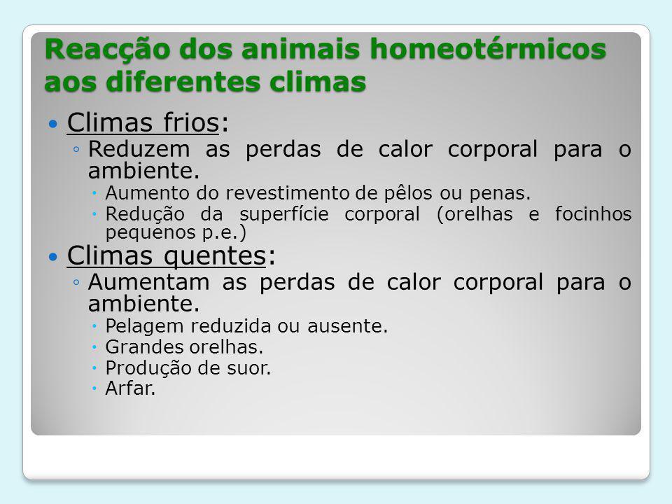 Reacção dos animais homeotérmicos aos diferentes climas