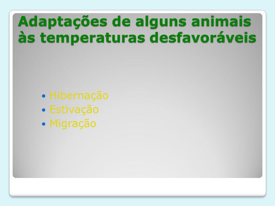 Adaptações de alguns animais às temperaturas desfavoráveis