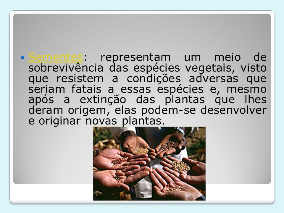 Sementes: representam um meio de sobrevivência das espécies vegetais, visto que resistem a condições adversas que seriam fatais a essas espécies e, mesmo após a extinção das plantas que lhes deram origem, elas podem-se desenvolver e originar novas plantas.