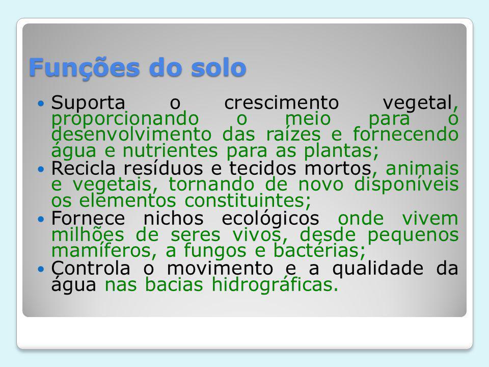 Funções do solo