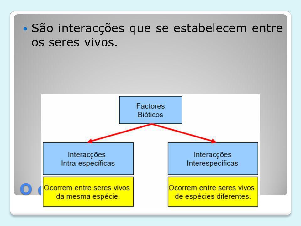 O que são factores bióticos
