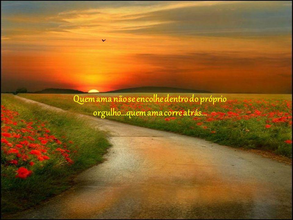 Quem ama não se encolhe dentro do próprio orgulho...quem ama corre atrás...
