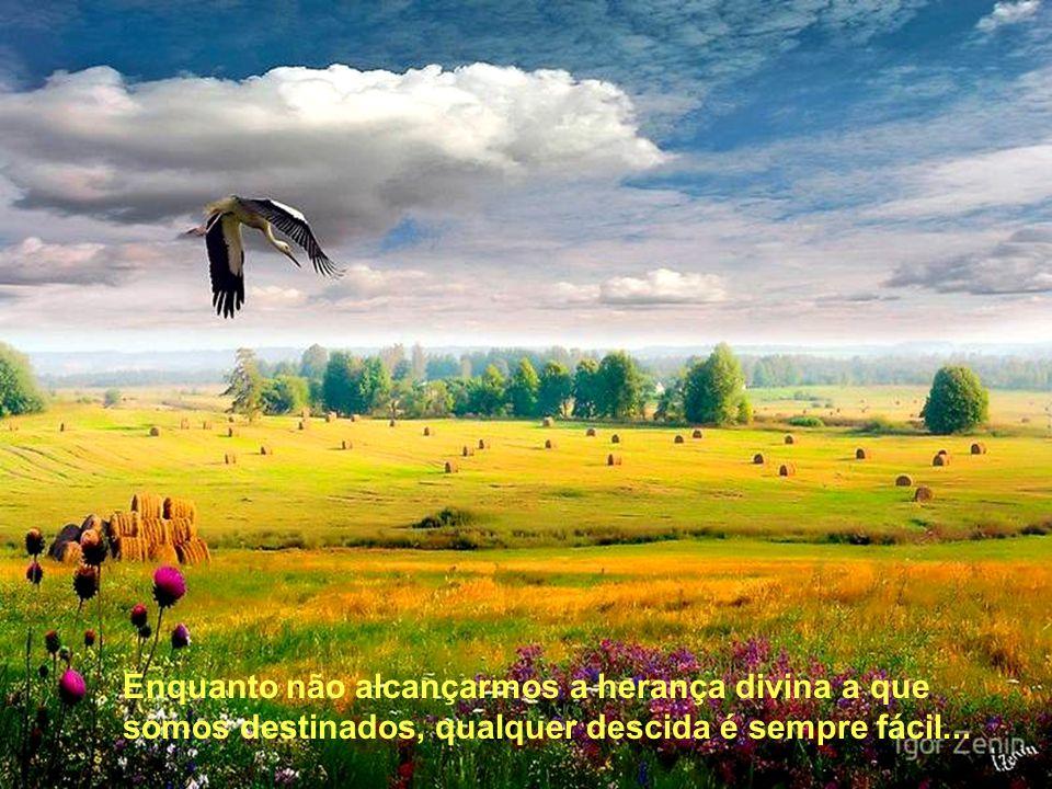 Enquanto não alcançarmos a herança divina a que somos destinados, qualquer descida é sempre fácil...