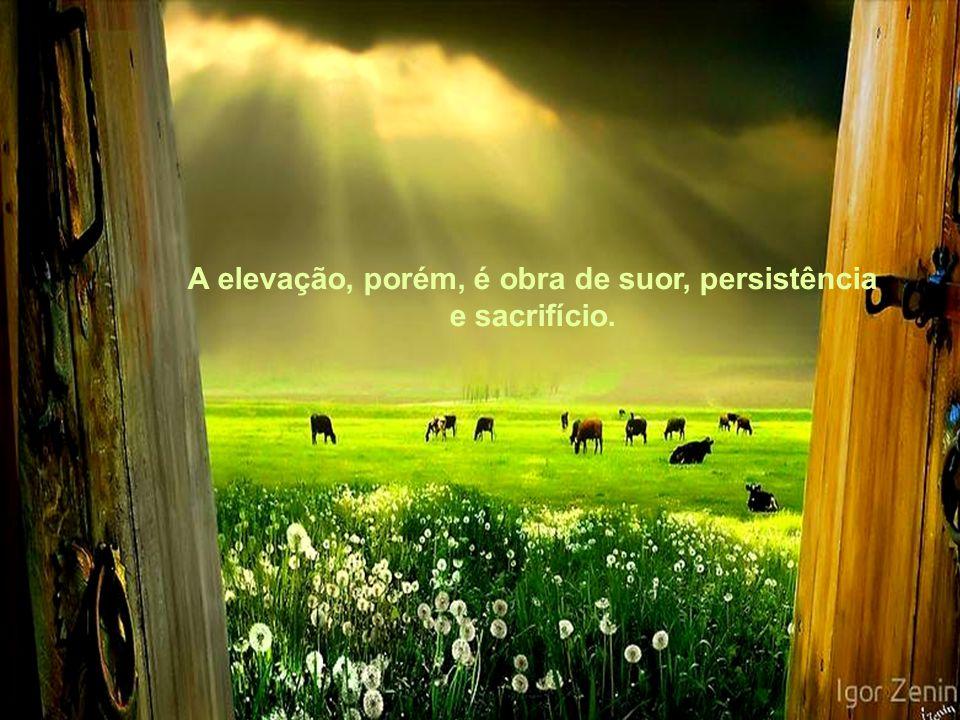 A elevação, porém, é obra de suor, persistência e sacrifício.
