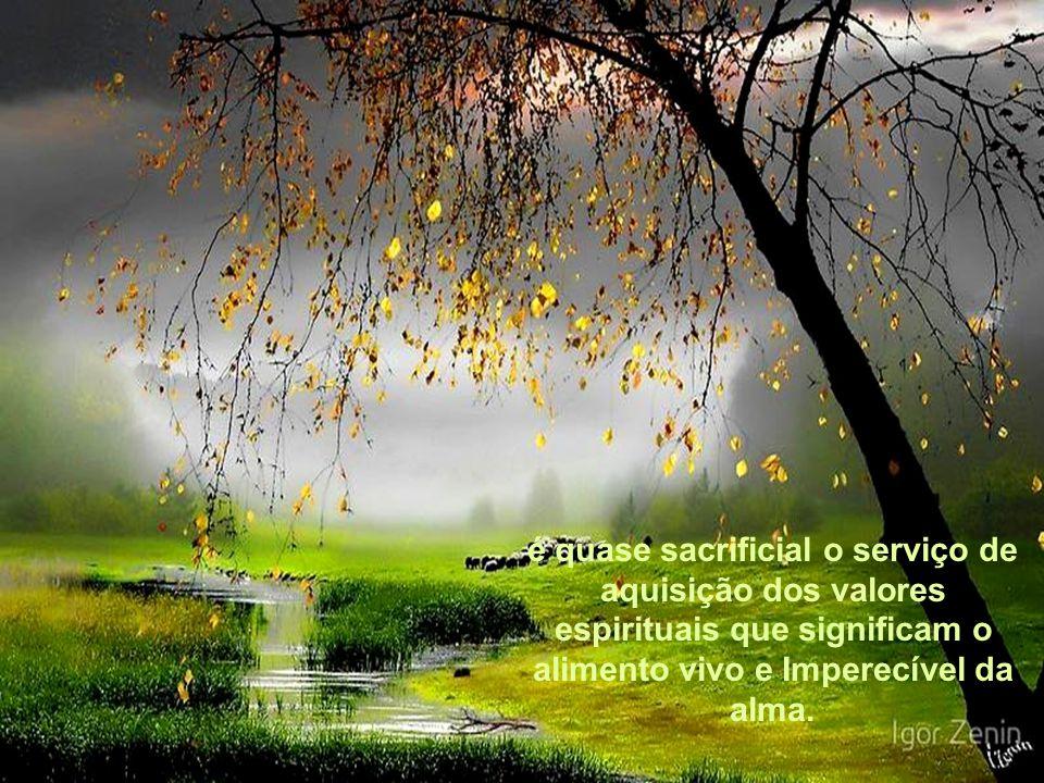 é quase sacrificial o serviço de aquisição dos valores espirituais que significam o alimento vivo e Imperecível da alma.