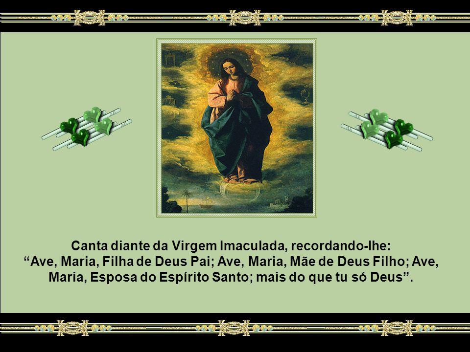 Canta diante da Virgem Imaculada, recordando-lhe: