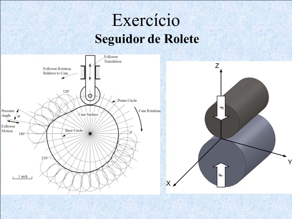 Exercício Seguidor de Rolete
