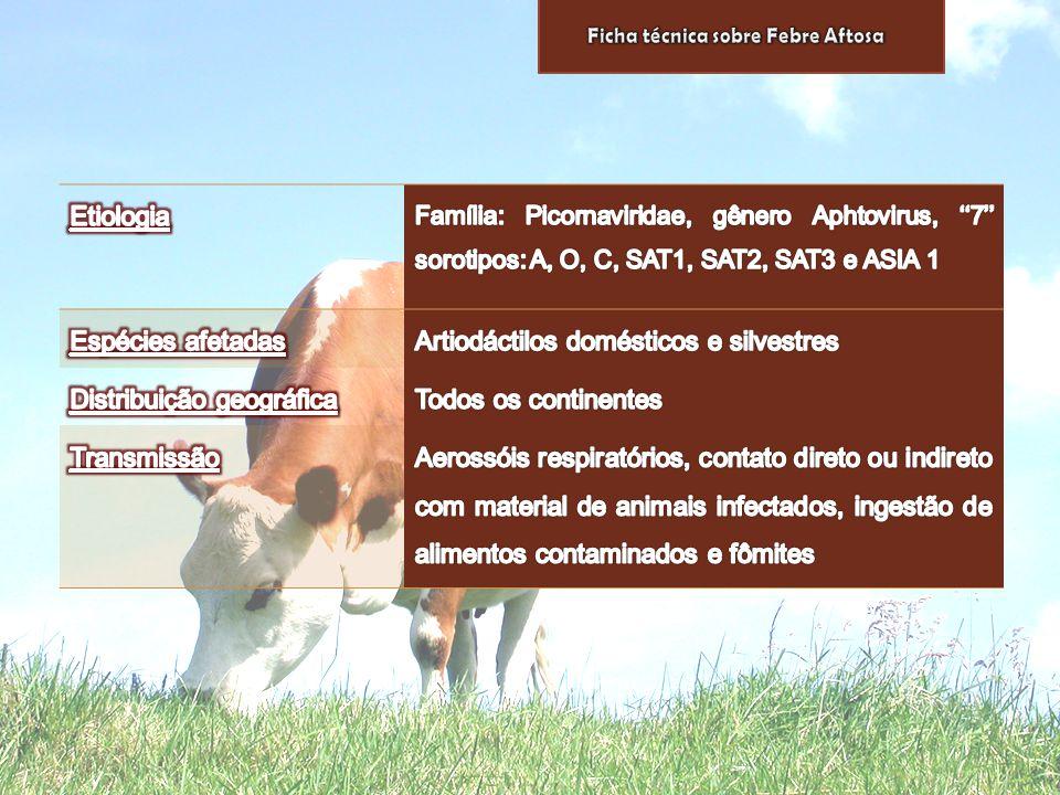 Artiodáctilos domésticos e silvestres Distribuição geográfica