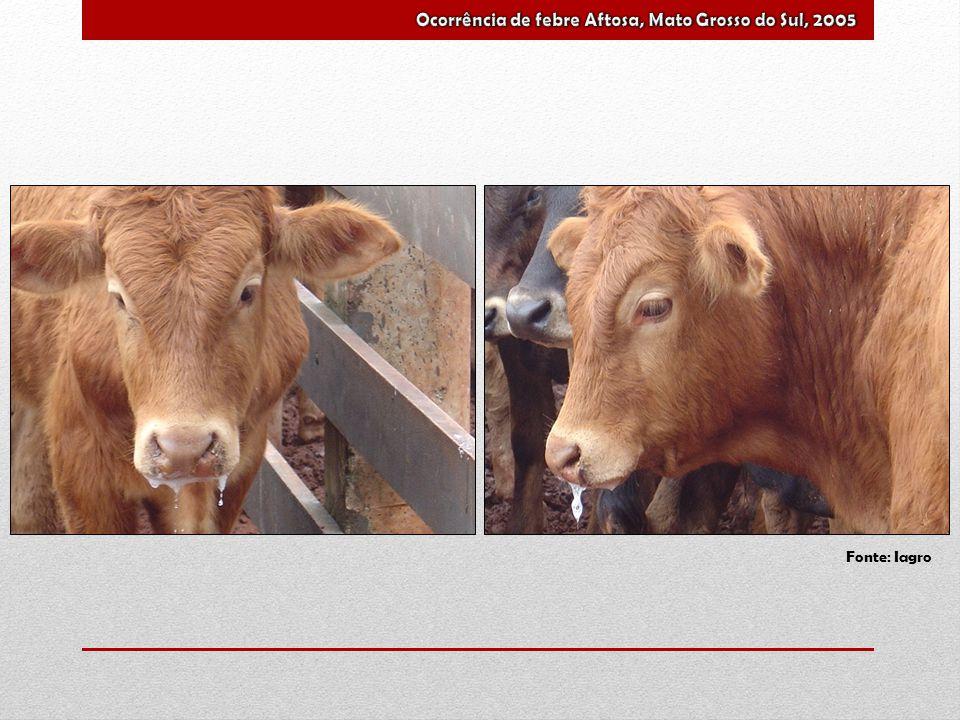 Ocorrência de febre Aftosa, Mato Grosso do Sul, 2005