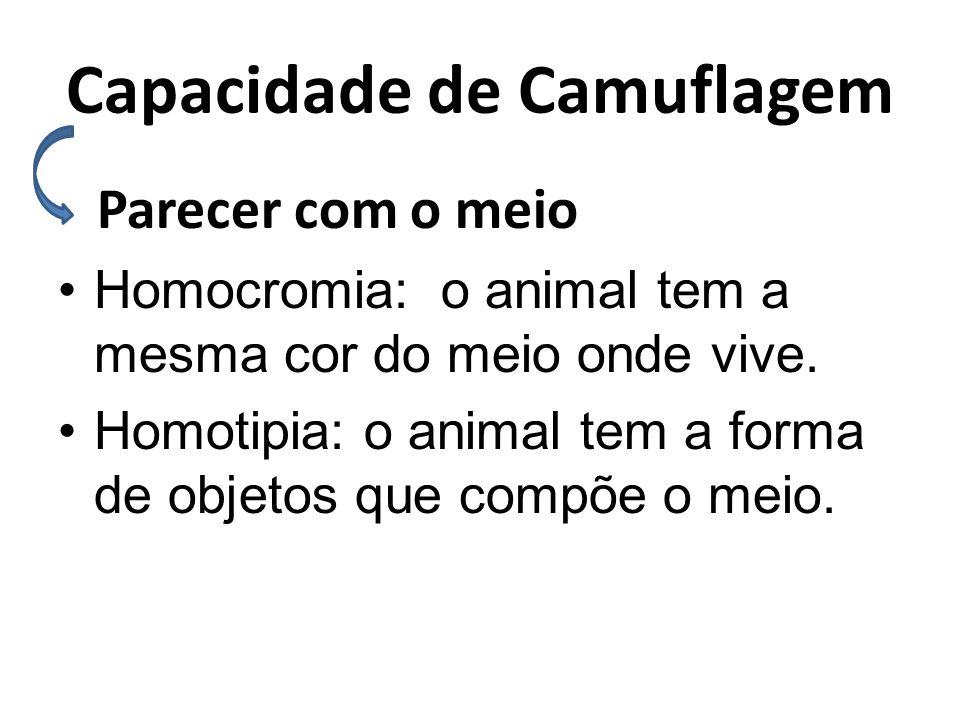 Capacidade de Camuflagem