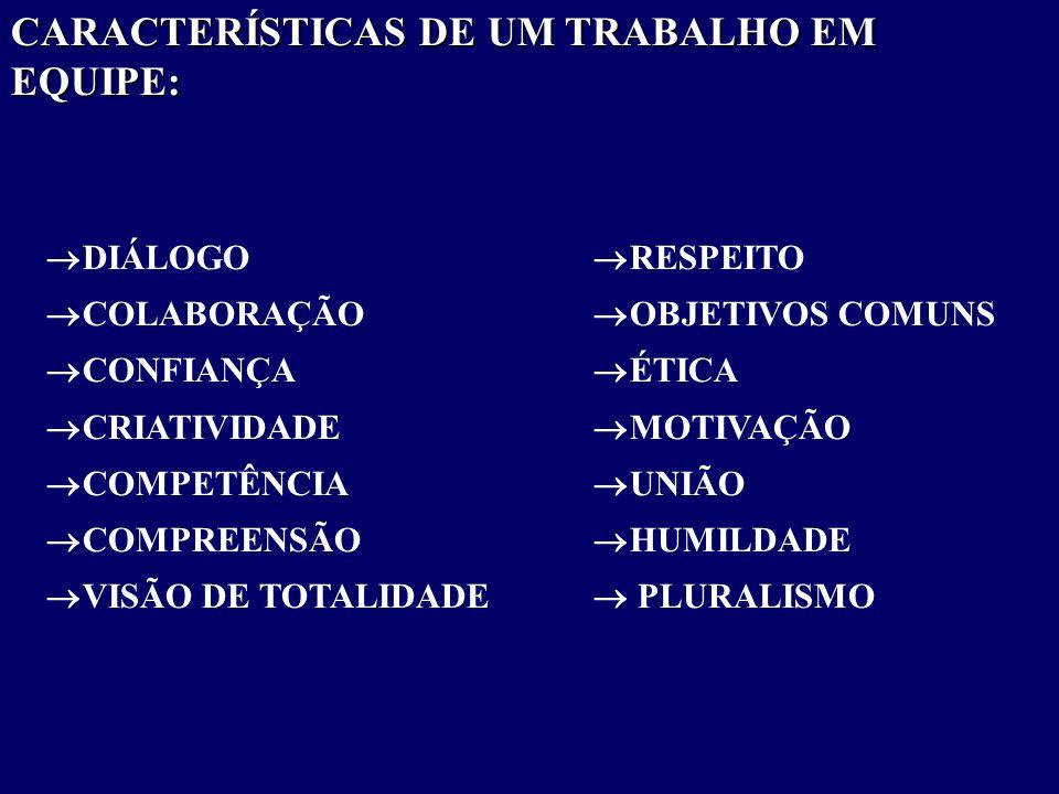 CARACTERÍSTICAS DE UM TRABALHO EM EQUIPE: