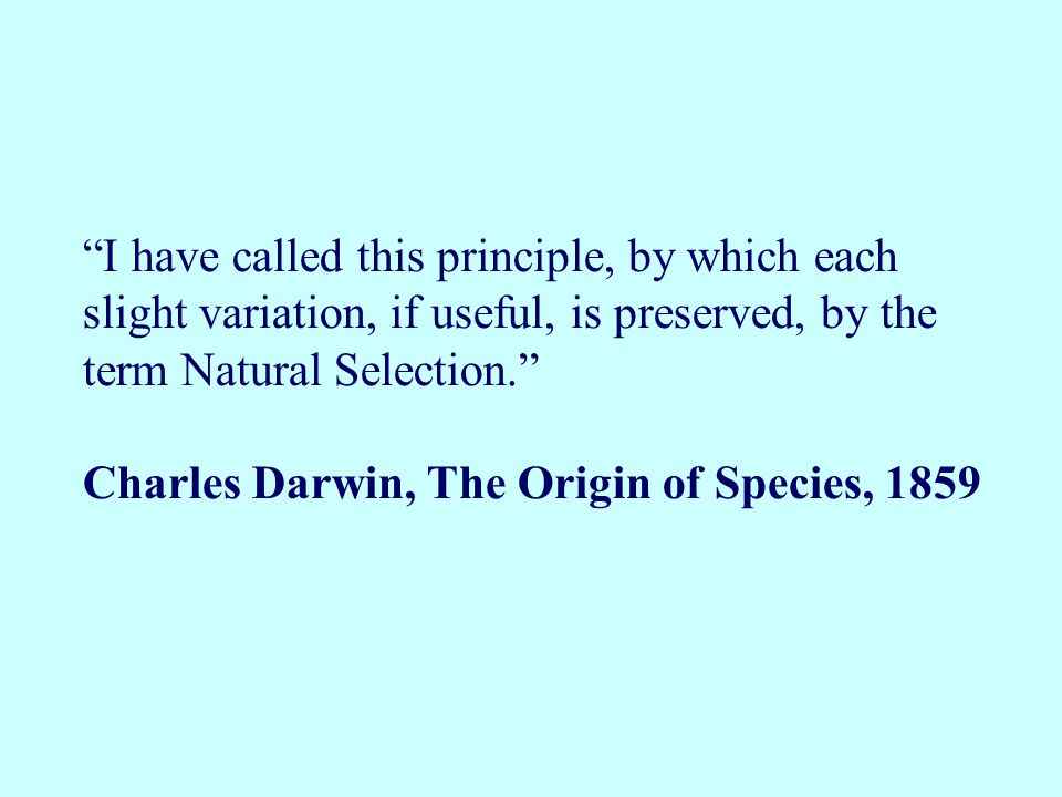 I have called this principle, by which each slight variation, if useful, is preserved, by the term Natural Selection.