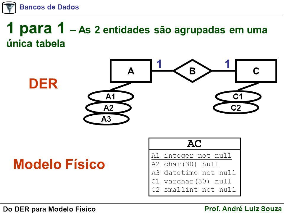 1 para 1 – As 2 entidades são agrupadas em uma