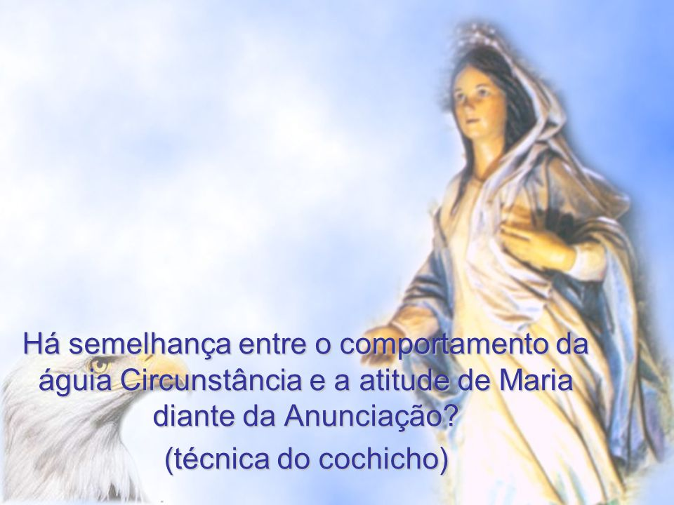 Há semelhança entre o comportamento da águia Circunstância e a atitude de Maria diante da Anunciação