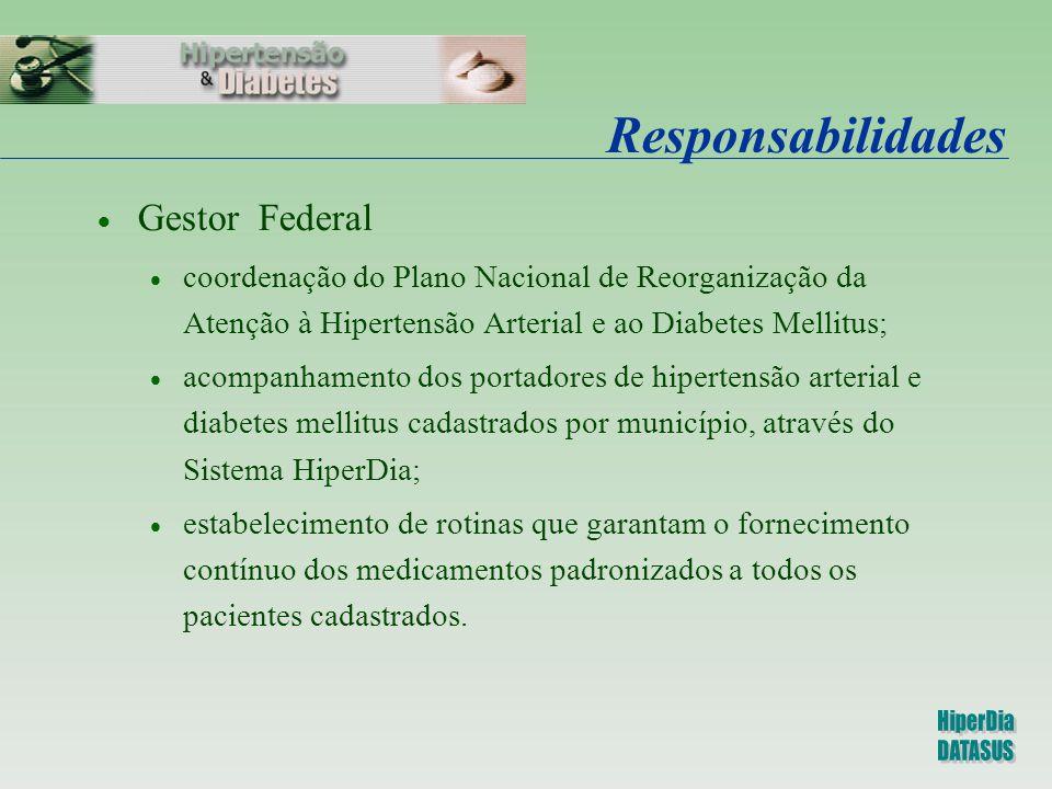 Responsabilidades Gestor Federal