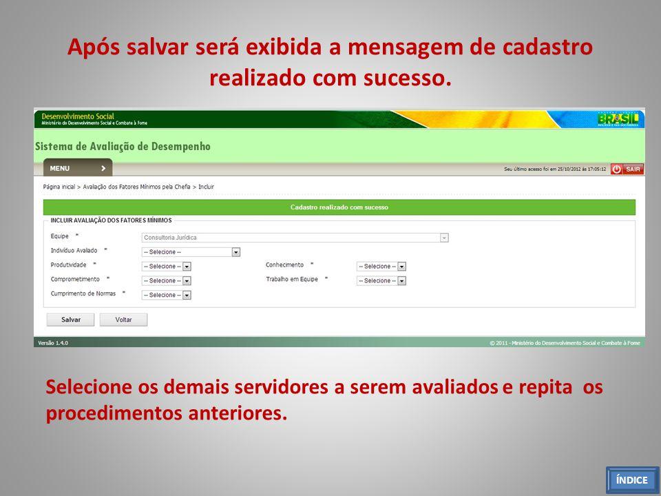 Após salvar será exibida a mensagem de cadastro realizado com sucesso.