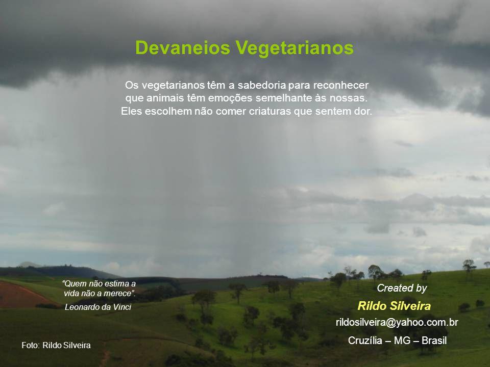 Devaneios Vegetarianos