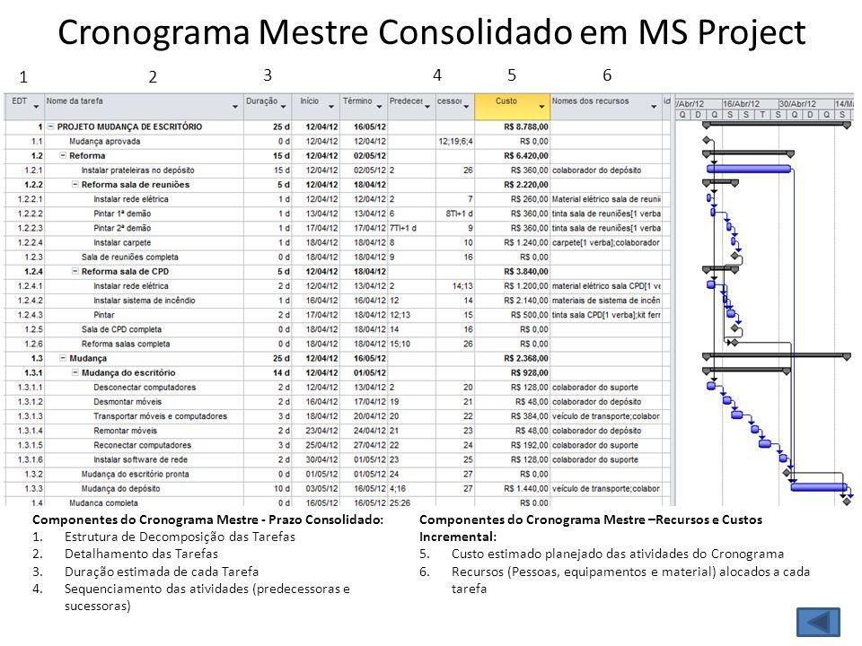 Cronograma Mestre Consolidado em MS Project