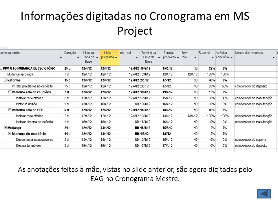 Informações digitadas no Cronograma em MS Project